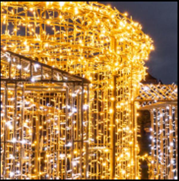 neon-nagel_weihnachtsbeleuchtung_referenz-04
